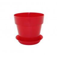 Протея Красная для фиалок и суккулентов