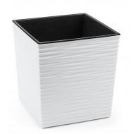 Юка Джуто Белая пластиковый горшок с вкладкой
