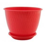 Рэйн Красный 2.4 литра, горшок с поддоном.